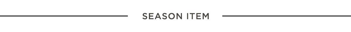 카테고리 ACC_Season_Item