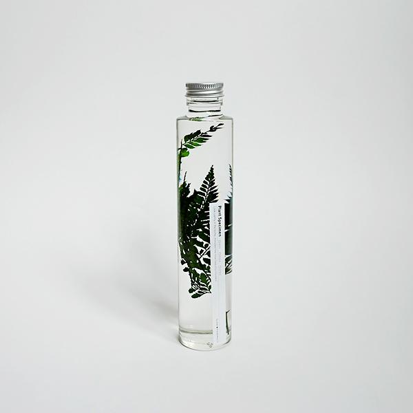 슬로우파마씨 식물표본 200ml (FERN)